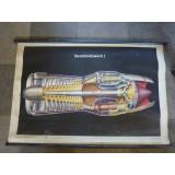 Strahltriebwerk I  Flugzeug - Lehrkarte